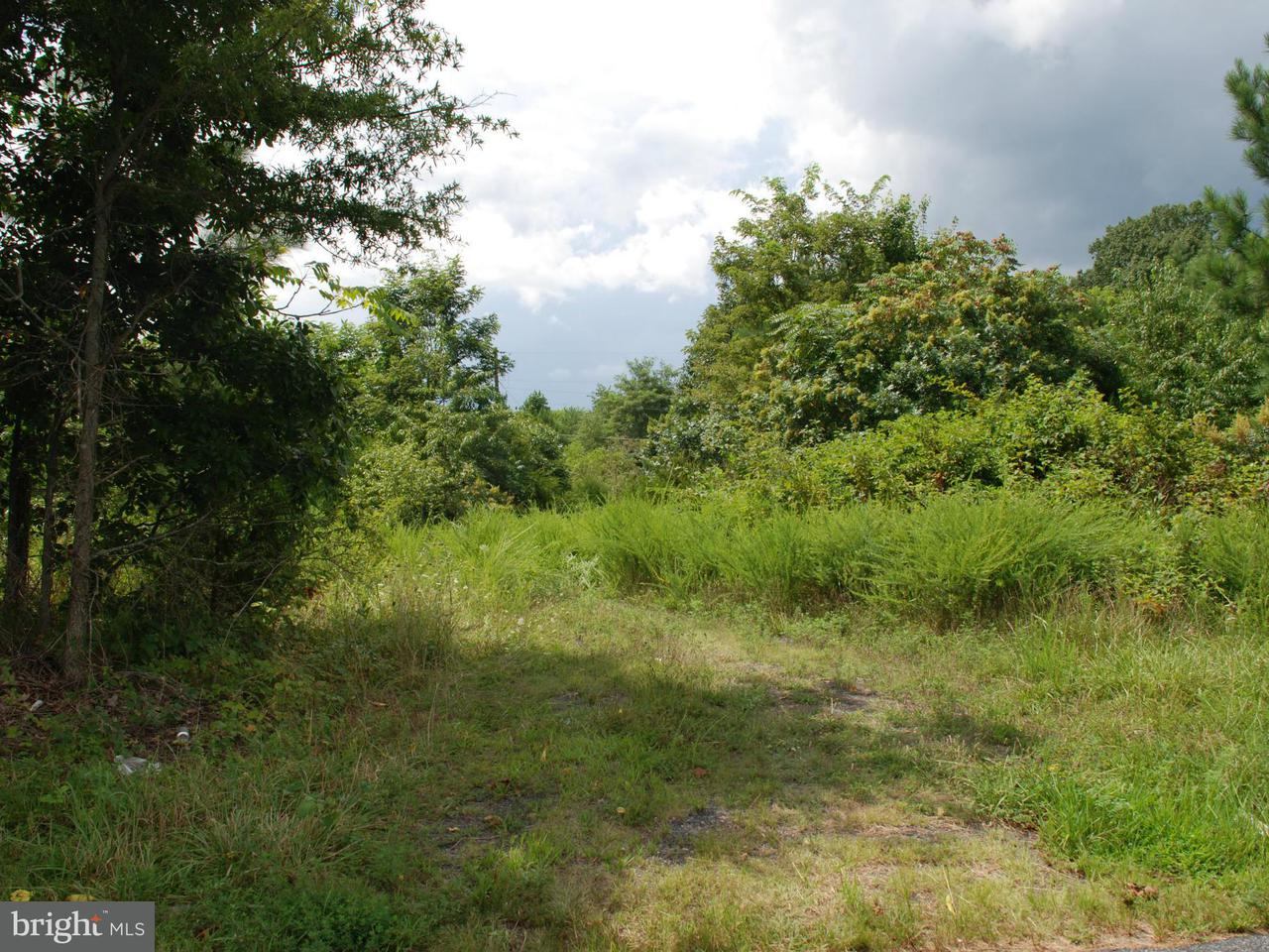 Additional photo for property listing at Twymans Mill Rd  Madison, Virginia 22719 United States