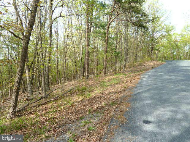 Additional photo for property listing at 0 Supinlick Ridge Road  Mount Jackson, Virginia 22842 United States