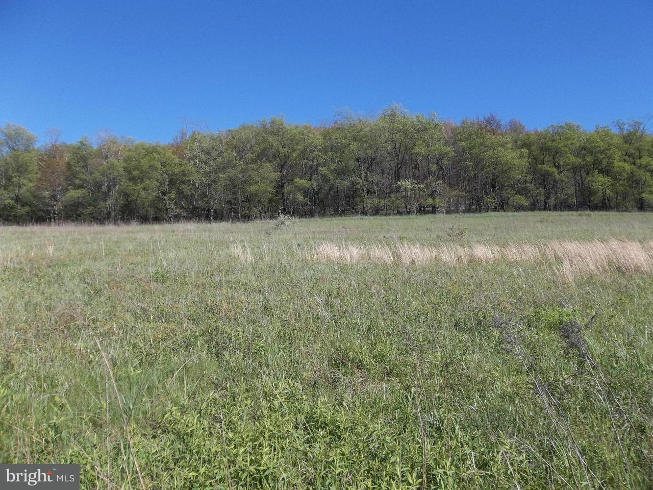 Land for Sale at Lot 7 North Pass Trail Deer Park, Maryland 21550 United States
