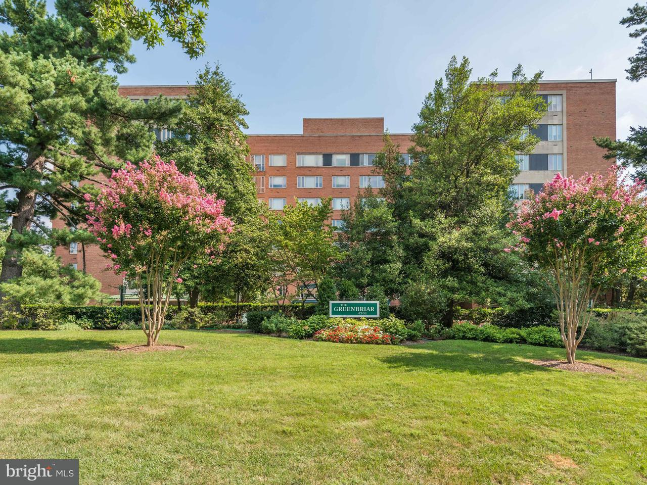 Other Residential for Rent at 4301 Massachusetts Ave NW #6014 Washington, District Of Columbia 20016 United States