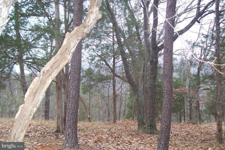 Additional photo for property listing at Hidden Hollow Rd  Romney, West Virginia 26757 United States