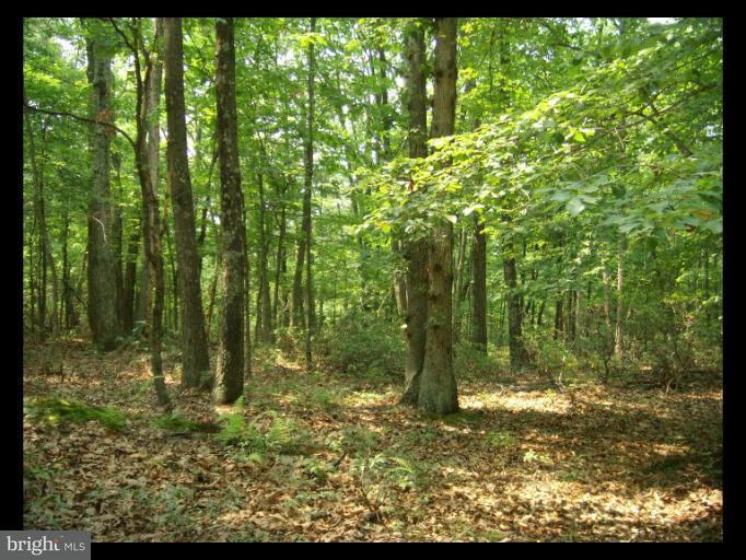 Land for Sale at 11sec 6 Haines Dr Capon Bridge, West Virginia 26711 United States