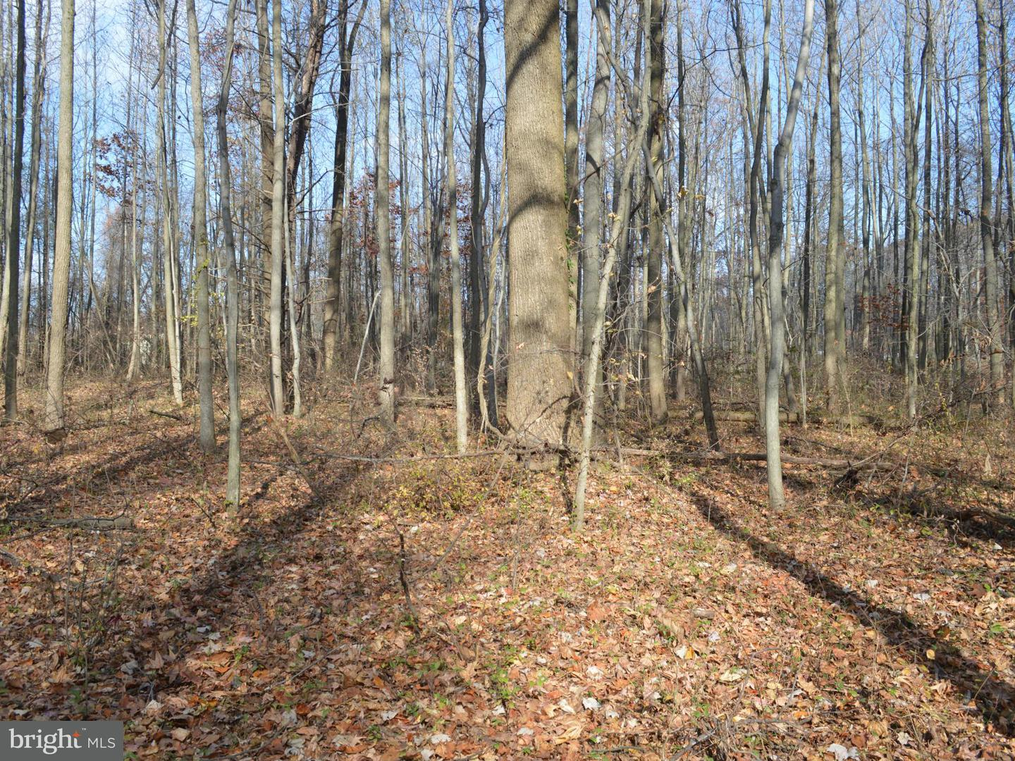 Additional photo for property listing at Joppa At I-95 Rd  Perry Hall, Maryland 21128 United States