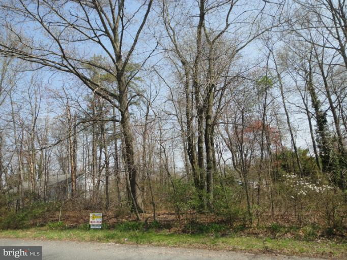 Additional photo for property listing at Ogle Dr  Charlestown, Maryland 21914 United States