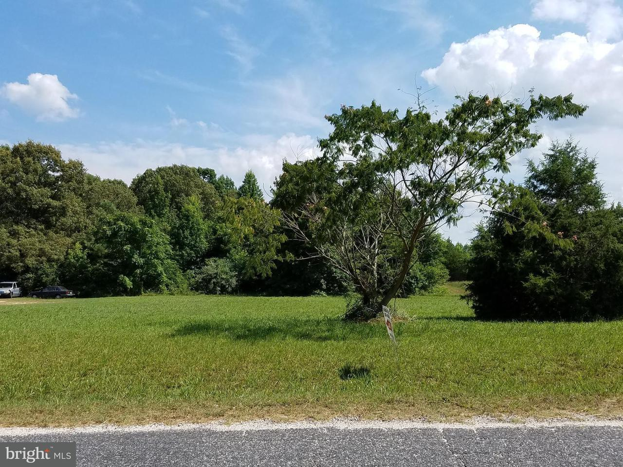 Single Family for Sale at 0 Rose Mount Rd Hustle, Virginia 22476 United States