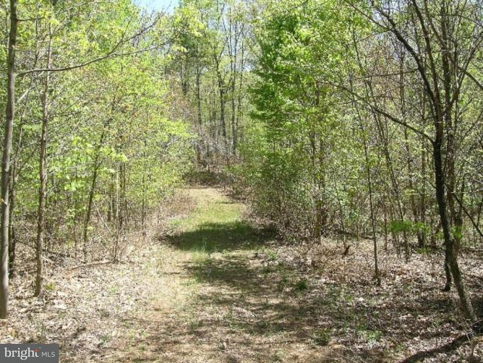 Land for Sale at Woodpecker Ct Gore, Virginia 22637 United States