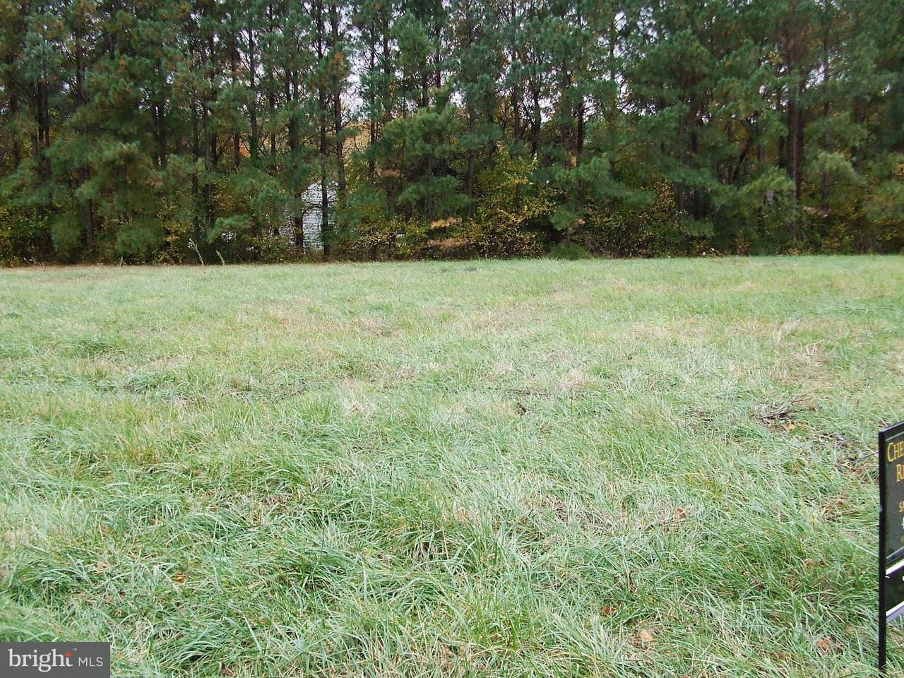 Land for Sale at 21869 Albie Rd Sherwood, Maryland 21665 United States