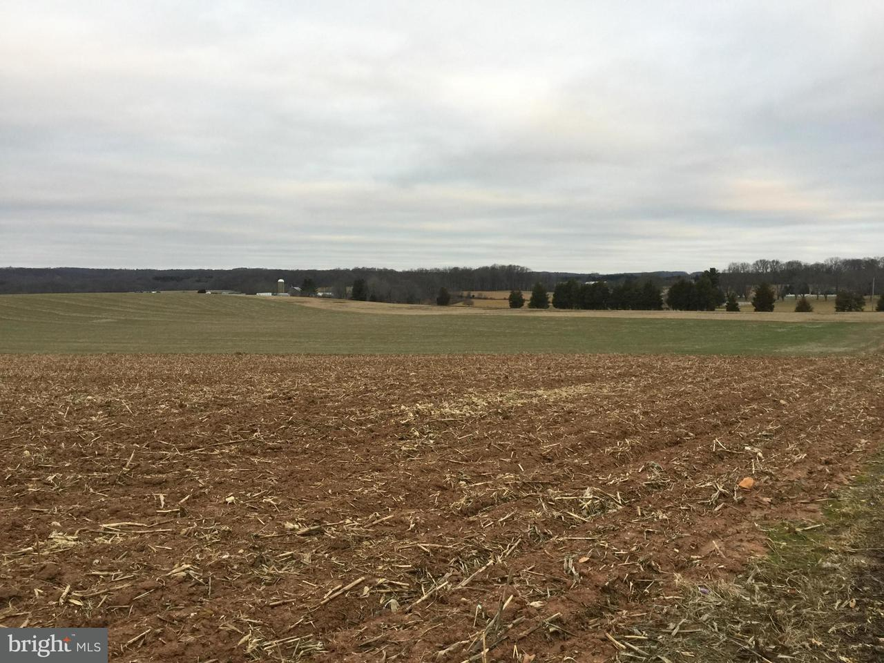 Farm for Sale at 6828 White Rock Road 6828 White Rock Road Sykesville, Maryland 21784 United States