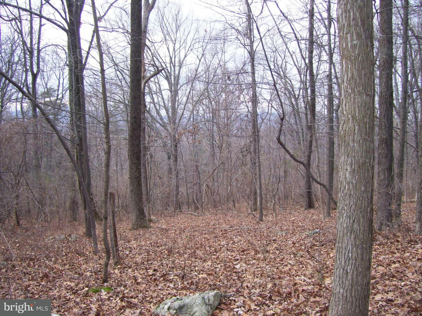 Additional photo for property listing at Ridge Rd  Frederick, Maryland 21702 United States