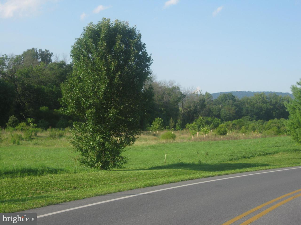 Land for Sale at Welty Road Welty Road Waynesboro, Pennsylvania 17268 United States