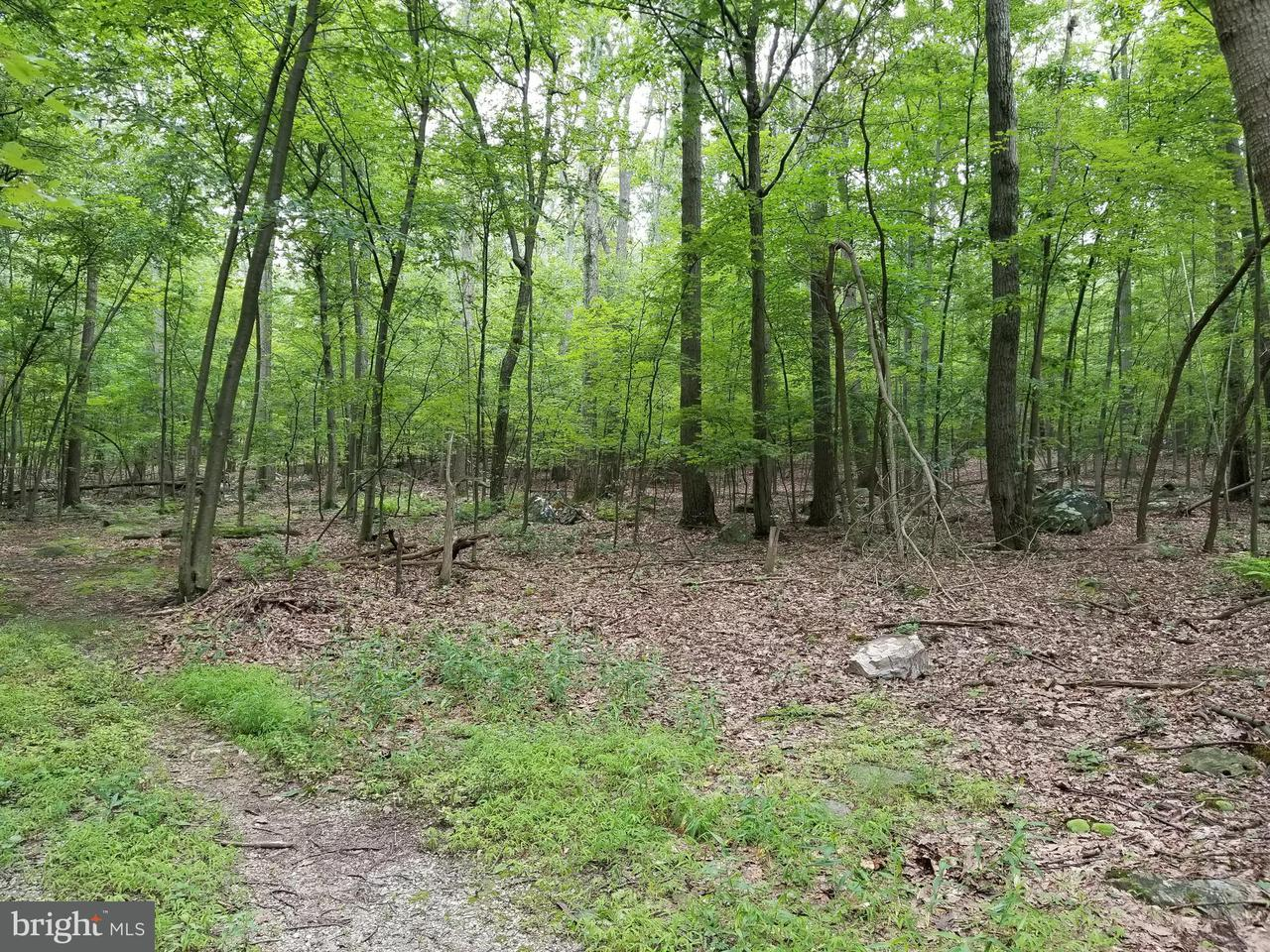 Land for Sale at 8.7 Ac. Remainder High Rock Rd Cascade, Maryland 21719 United States