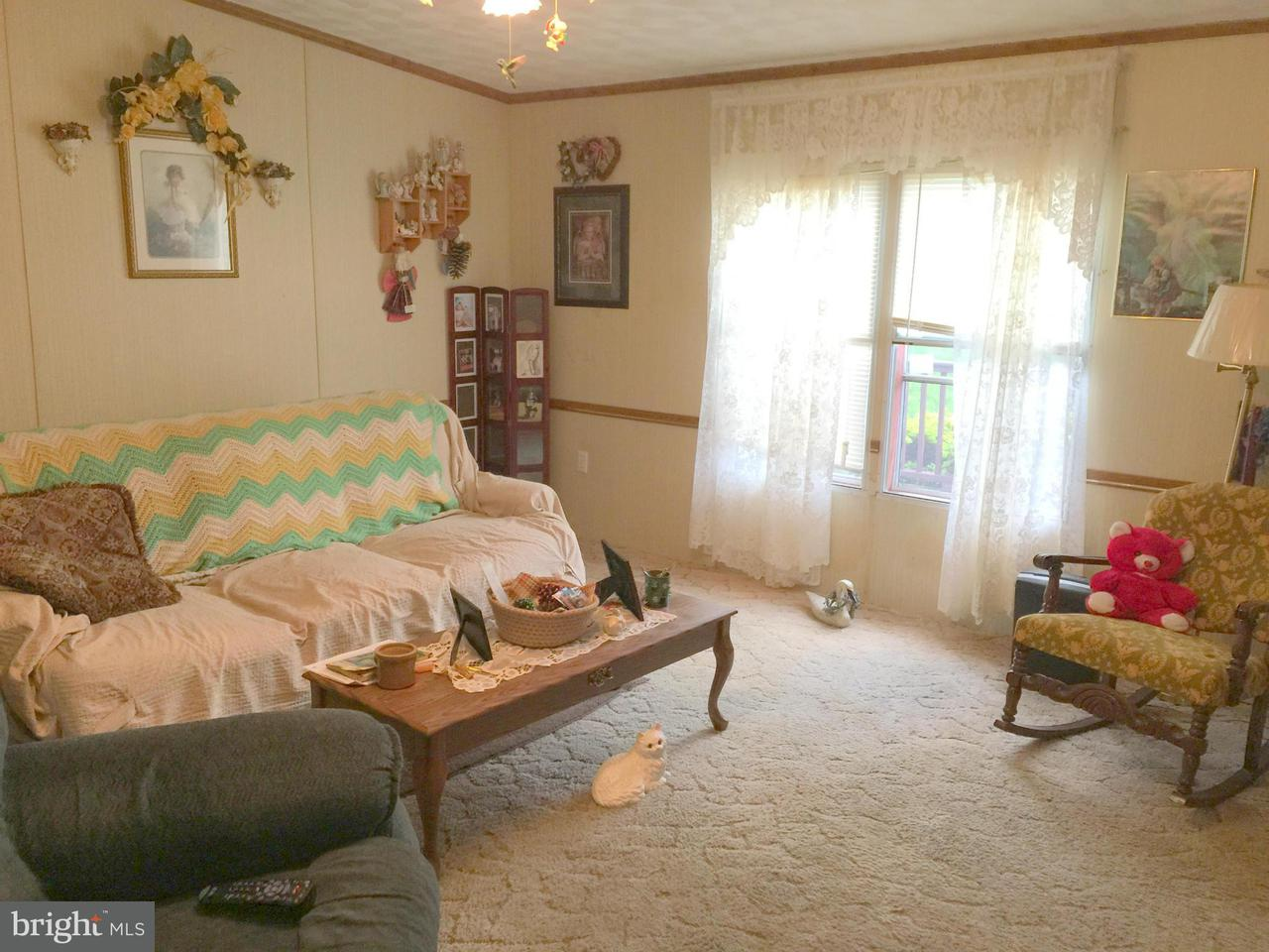Additional photo for property listing at 1306 Rocky Branch Rd  Luray, Virginia 22835 United States