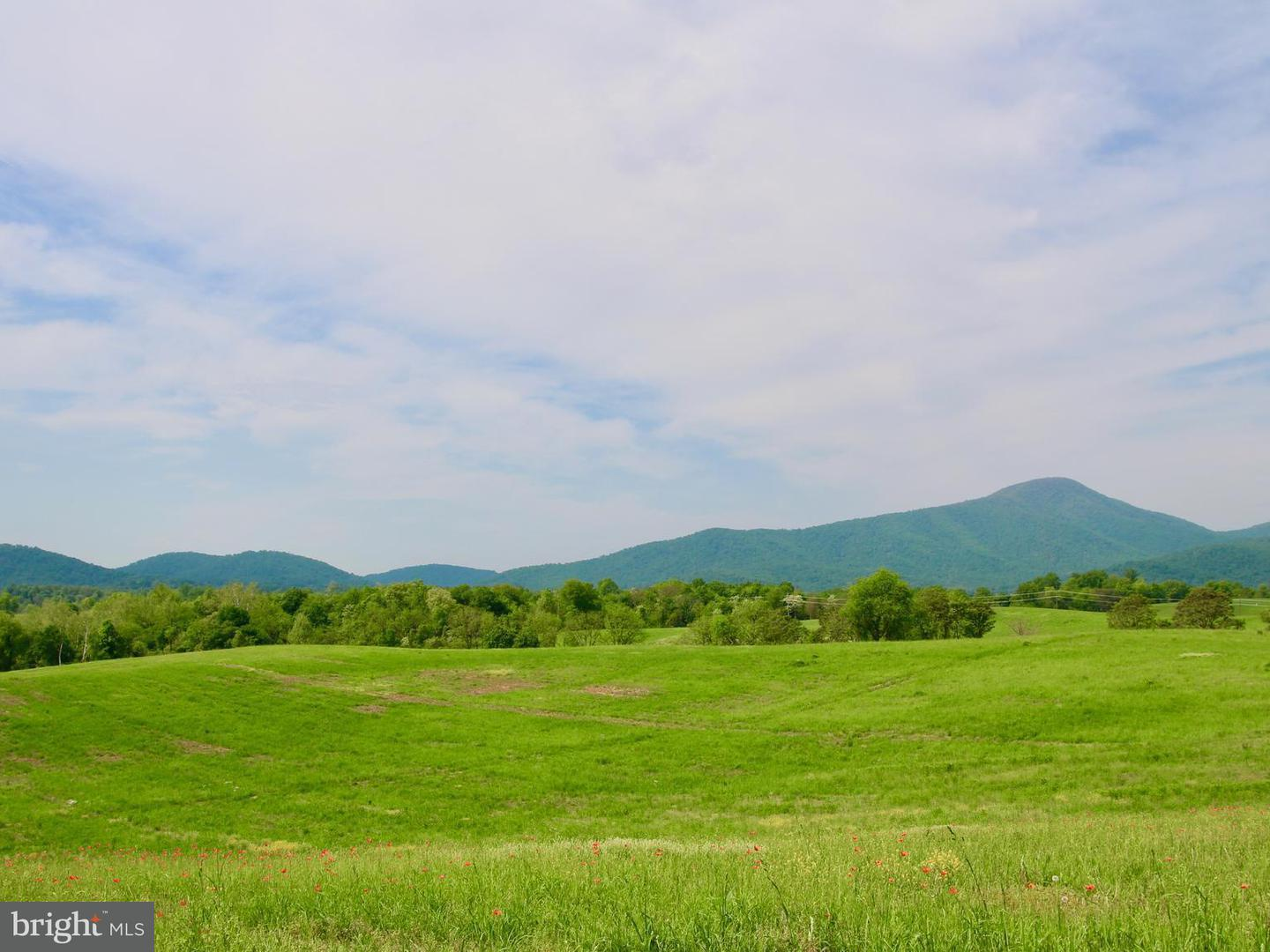 Land for Sale at 0 Jericho Flint Hill, Virginia 22627 United States