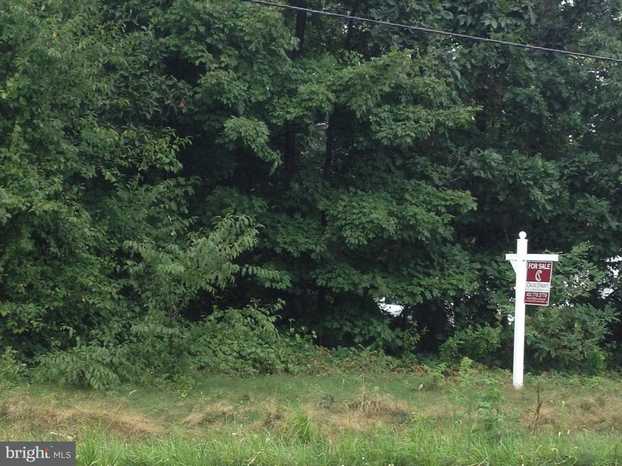 Land for Sale at Chestertown Rd Chestertown, Maryland 21620 United States