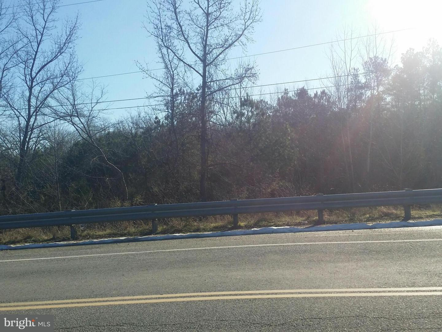 Additional photo for property listing at 0 Nelson Hill Road  Milford, Virginia 22514 United States