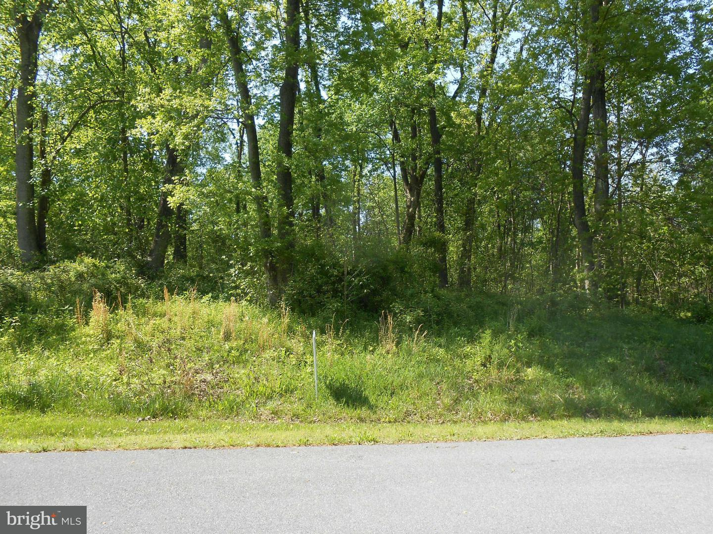 Land for Sale at 104 Reachcliff Dr Shepherdstown, West Virginia 25443 United States