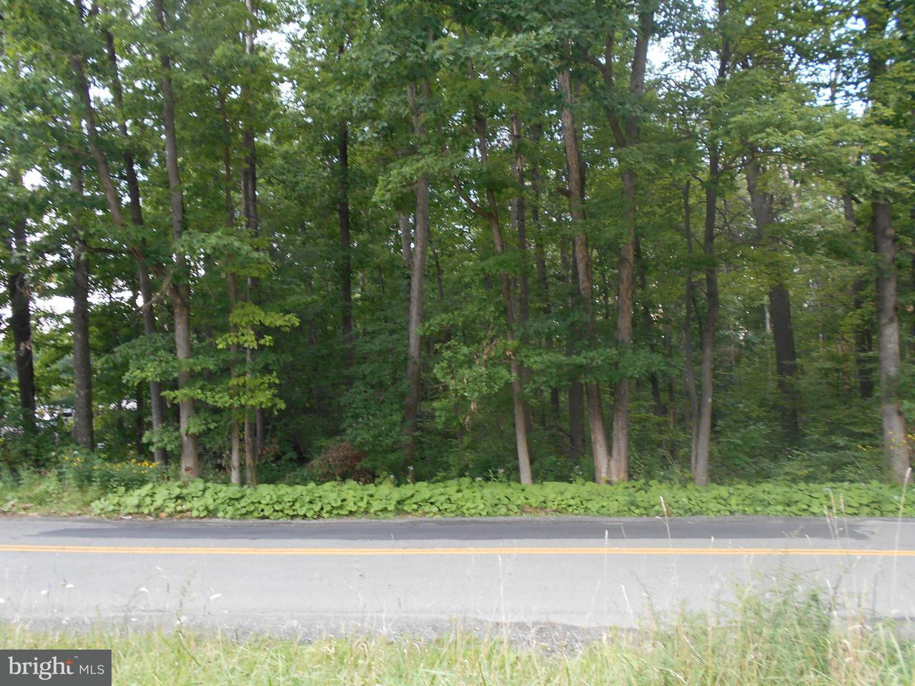 Land for Sale at 0 Brandonville Pike Albright, West Virginia 26519 United States