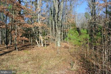 Land for Sale at 10110 Historical Pl Faulkner, Maryland 20632 United States