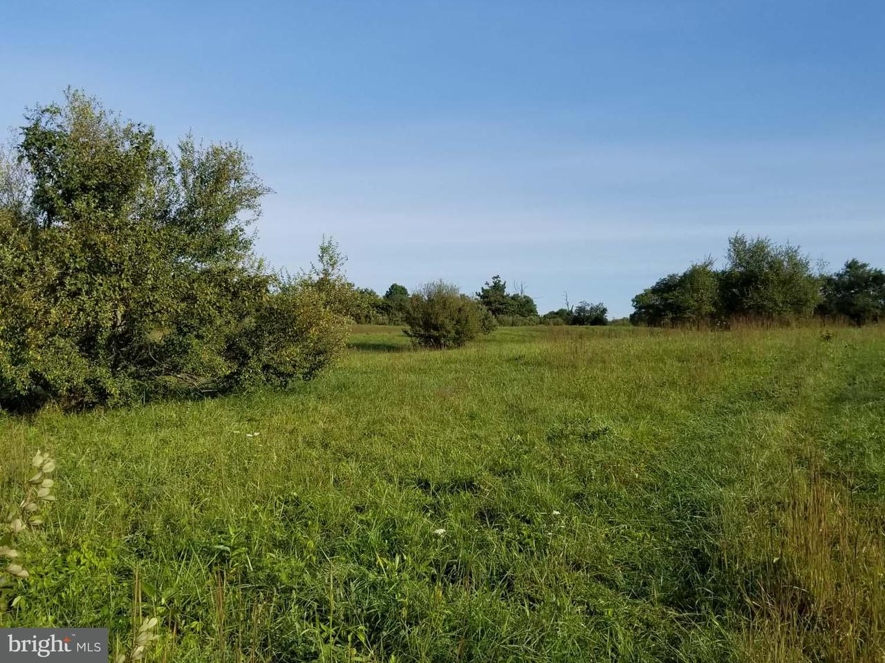 Additional photo for property listing at Leeds Manor Rd  Marshall, Virginia 20115 United States