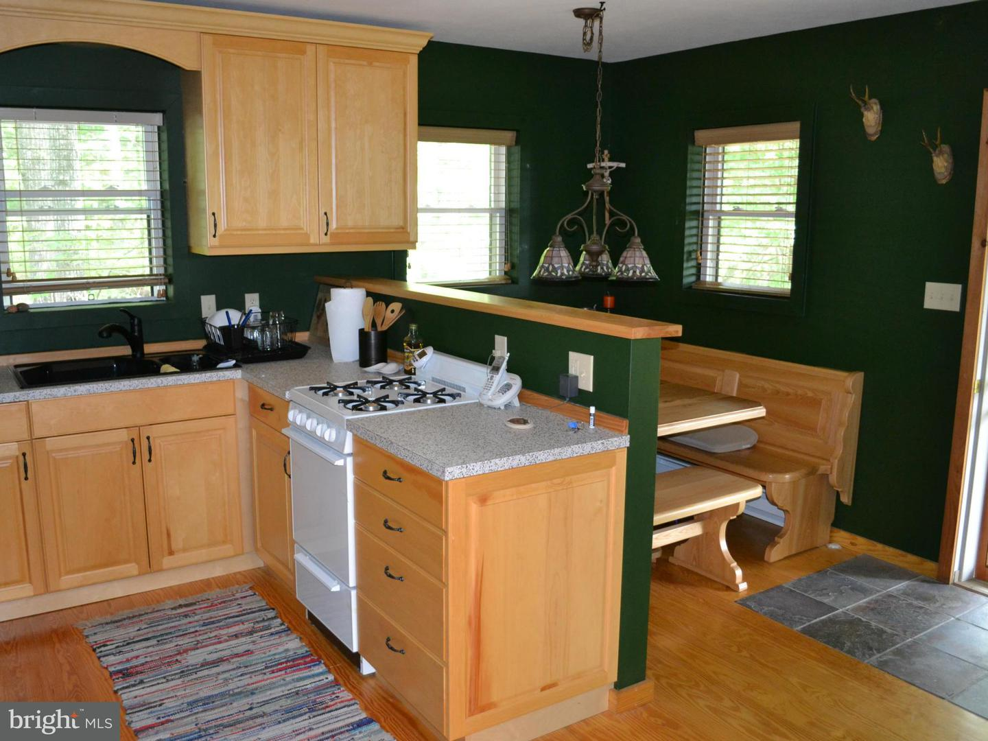 Additional photo for property listing at 232 Hawks Ridge Rd  Franklin, West Virginia 26807 United States
