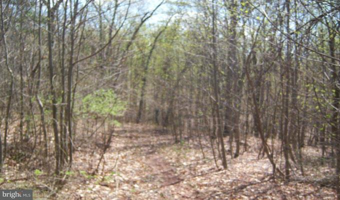 Additional photo for property listing at 7 Highland Hills  Berkeley Springs, West Virginia 25411 United States