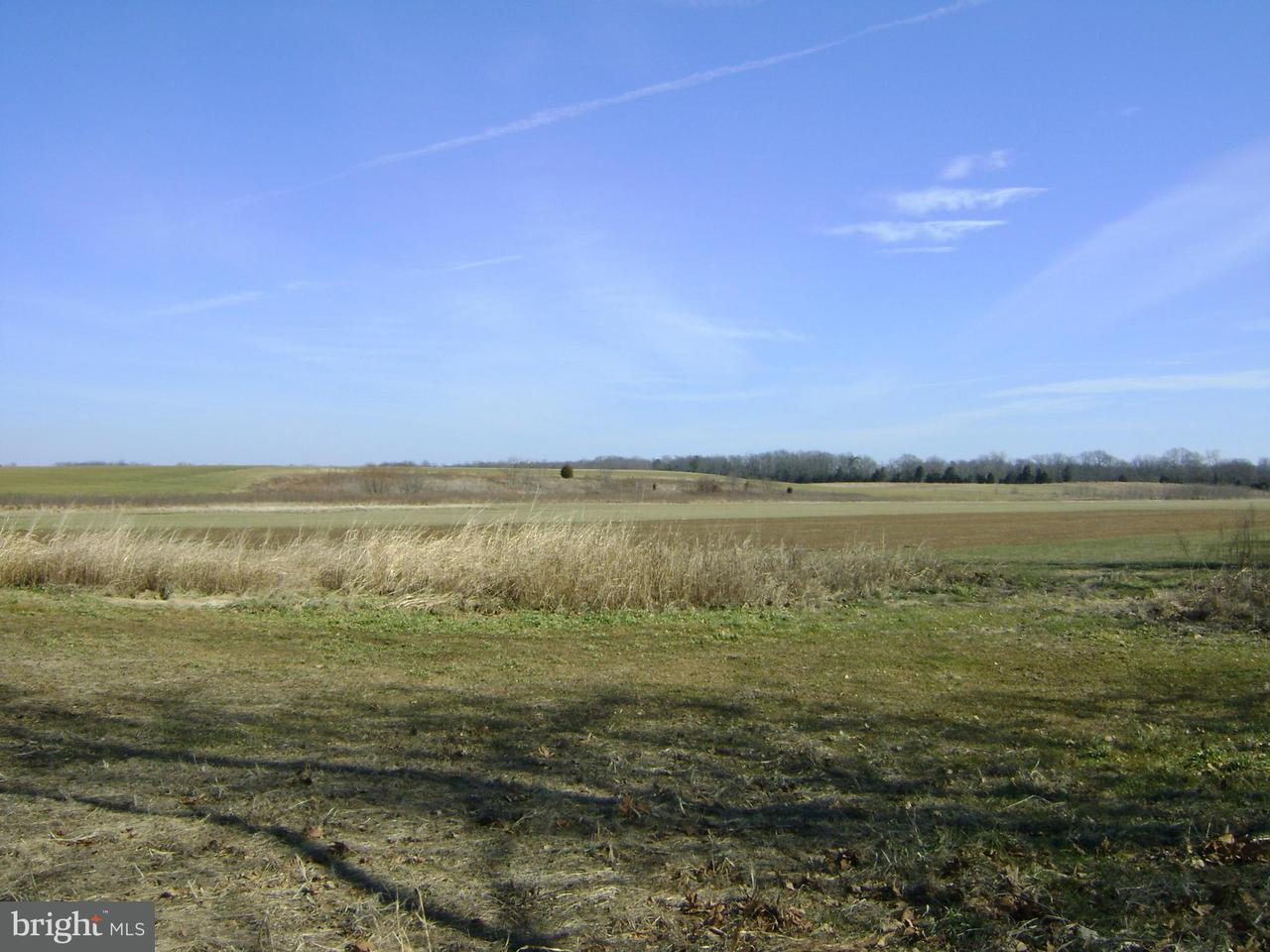 Additional photo for property listing at 7003 Summerduck Rd  Remington, Virginia 22734 United States