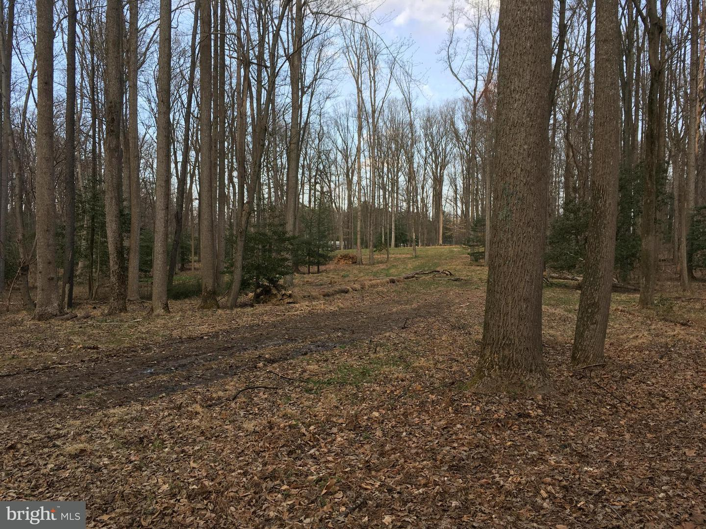 Land for Sale at 501 Haven Ln Great Falls, Virginia 22066 United States