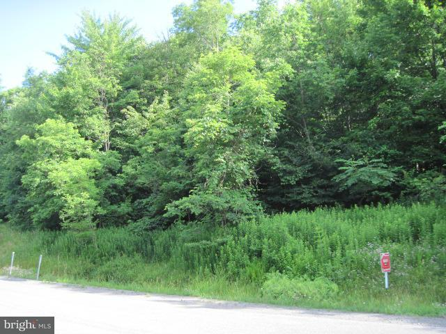 Land for Sale at 20 Marsh Hill Rd Mc Henry, Maryland 21541 United States