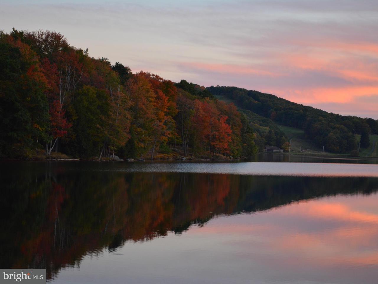 Land for Sale at 30 Goldenrod Dr Terra Alta, West Virginia 26764 United States