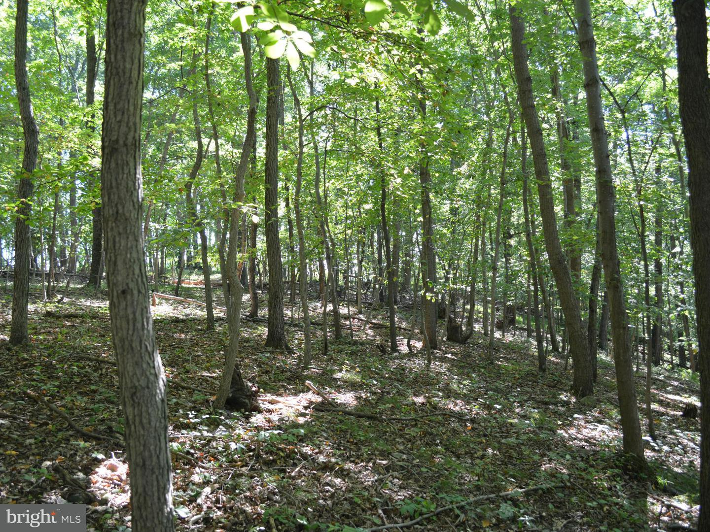 Additional photo for property listing at Millers Station  Hampstead, Maryland 21074 United States