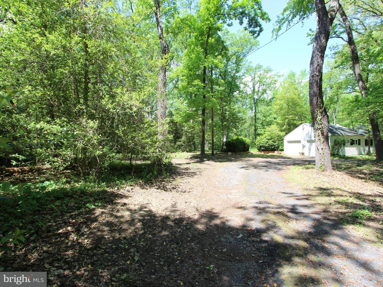 Additional photo for property listing at 1711 St Giles Rd  Gibson Island, Maryland 21056 United States