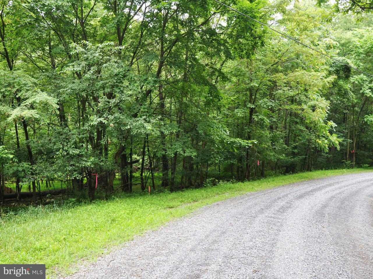 Land for Sale at L-55 Logger Dr Gore, Virginia 22637 United States