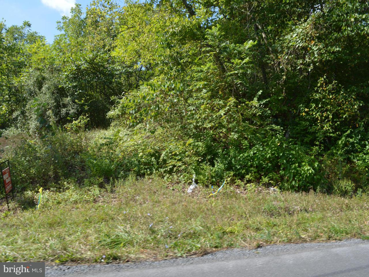 Additional photo for property listing at River Rd  Berkeley Springs, West Virginia 25411 United States