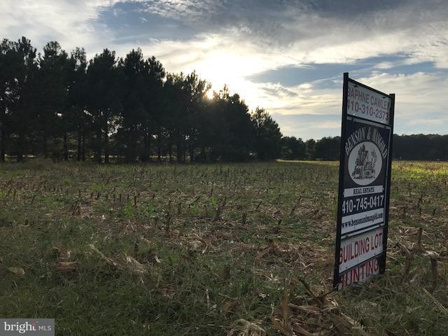 Land for Sale at Mcdaniel Farm Ln McDaniel, Maryland 21647 United States