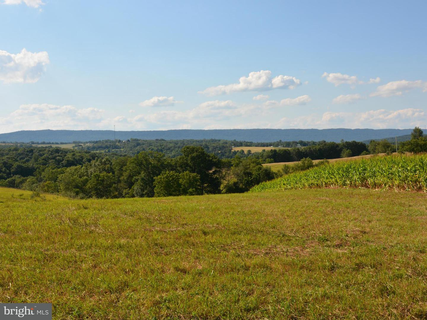 Land for Sale at 0 Ritchey Rd Everett, Pennsylvania 15537 United States