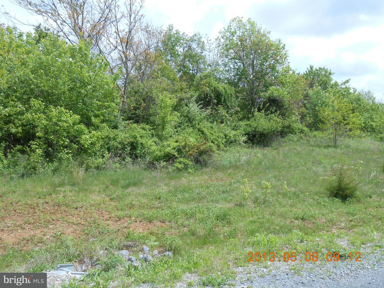 Land for Sale at 29lot # Apple Jack Ct Mercersburg, Pennsylvania 17236 United States