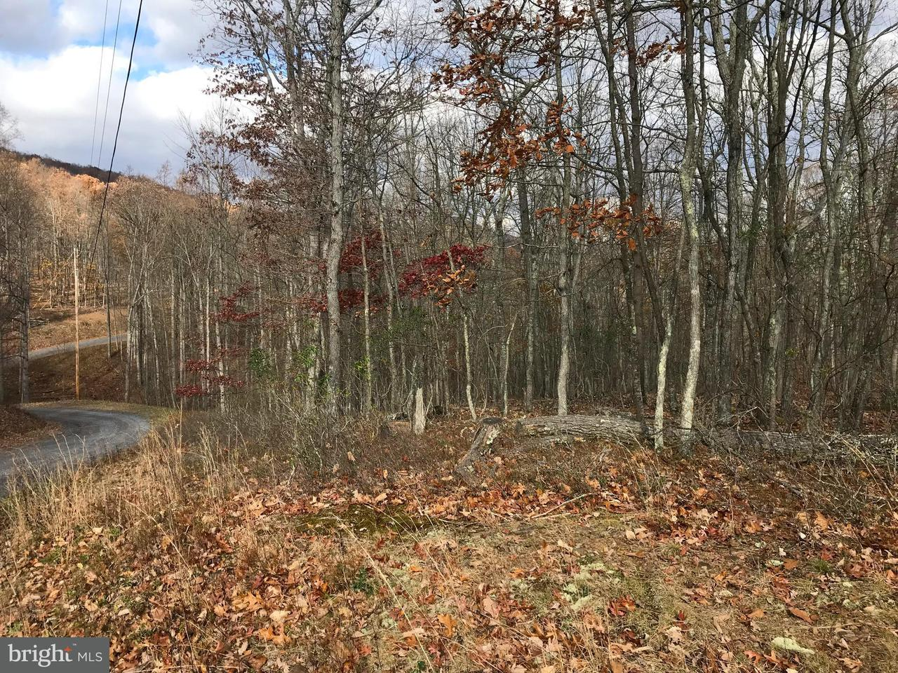 Land for Sale at Mtn Laurel Rd Bloomery, West Virginia 26817 United States