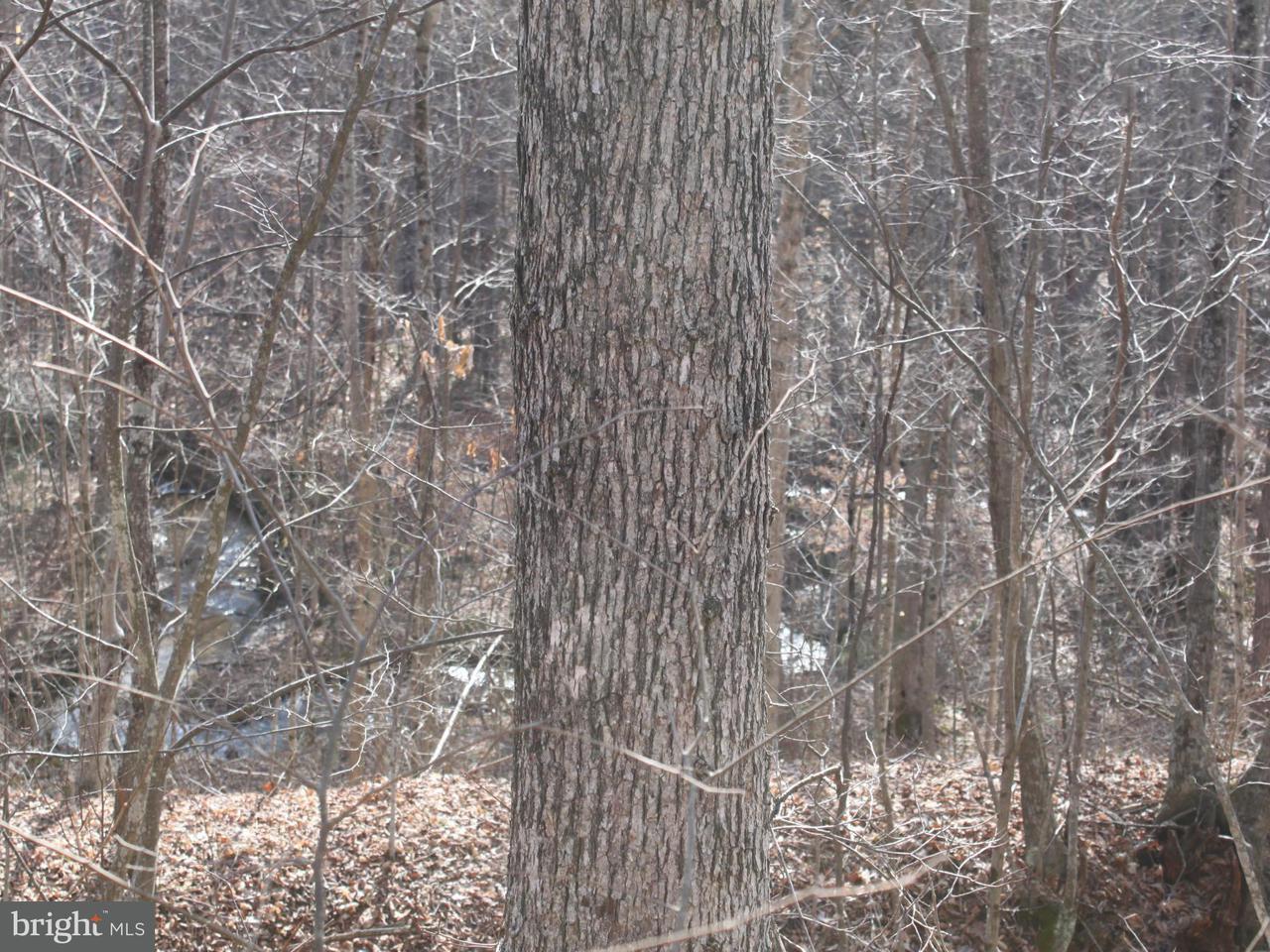 Terrain pour l Vente à Not On File Not On File Three Springs, Pennsylvanie 17264 États-Unis
