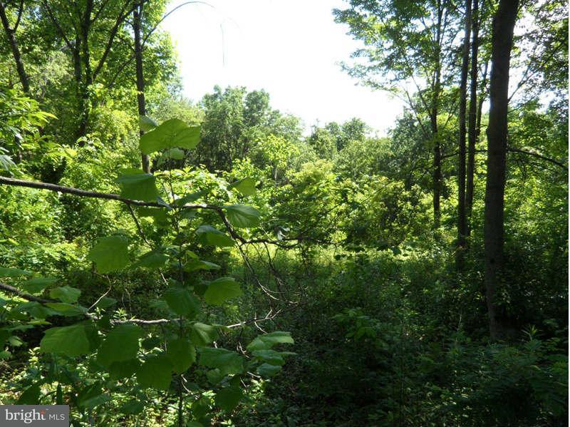 Land for Sale at 4233 Lafayette St Frederick, Maryland 21704 United States