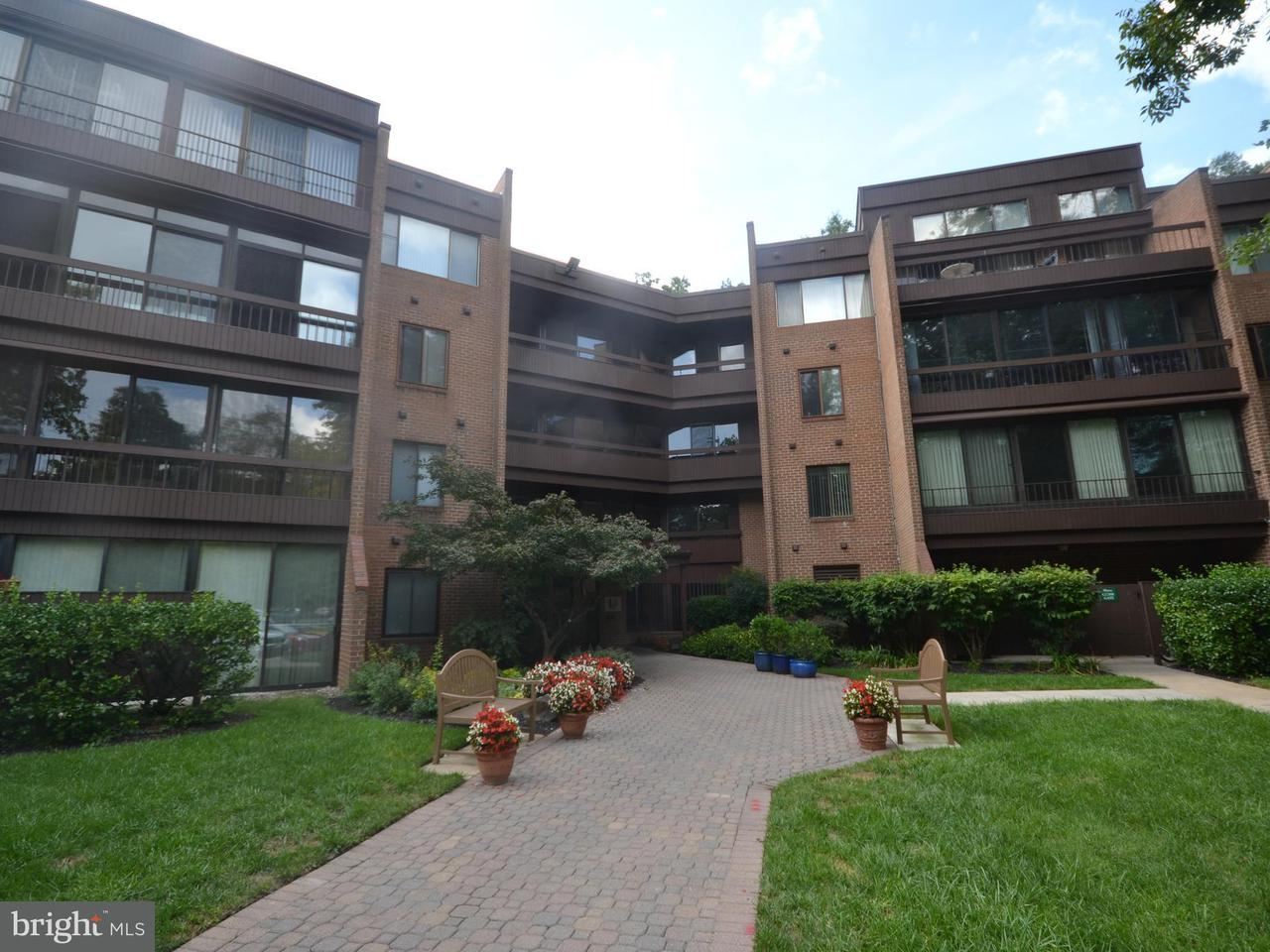 Condominium for Sale at 6300 Red Cedar Pl #403 Baltimore, Maryland 21209 United States