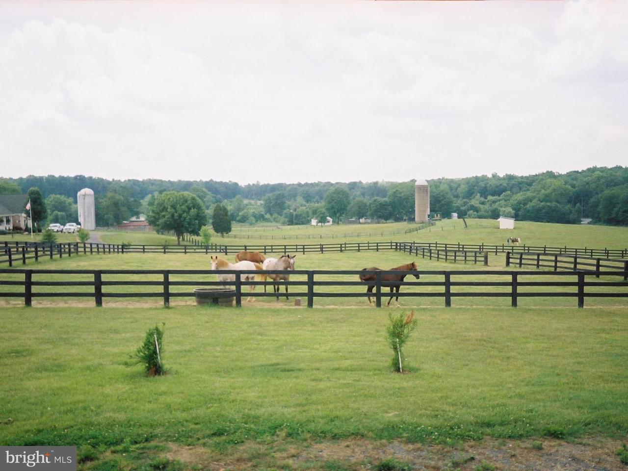 농장 용 매매 에 12863 Elk Run Church Road 12863 Elk Run Church Road Goldvein, 버지니아 22720 미국
