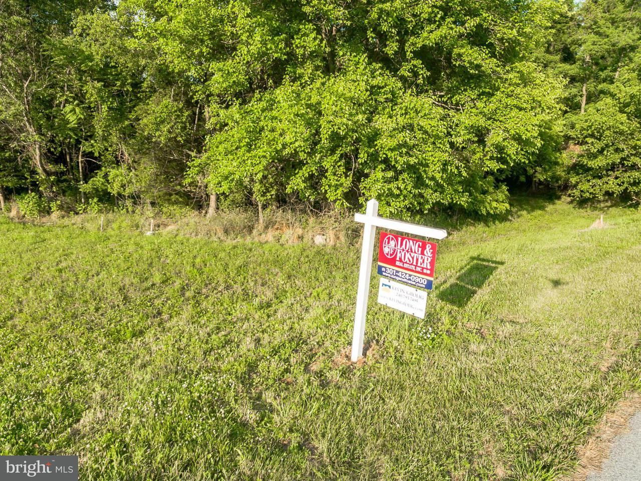 Land for Sale at 8302 Prophet Acres Rd Fairplay, Maryland 21733 United States
