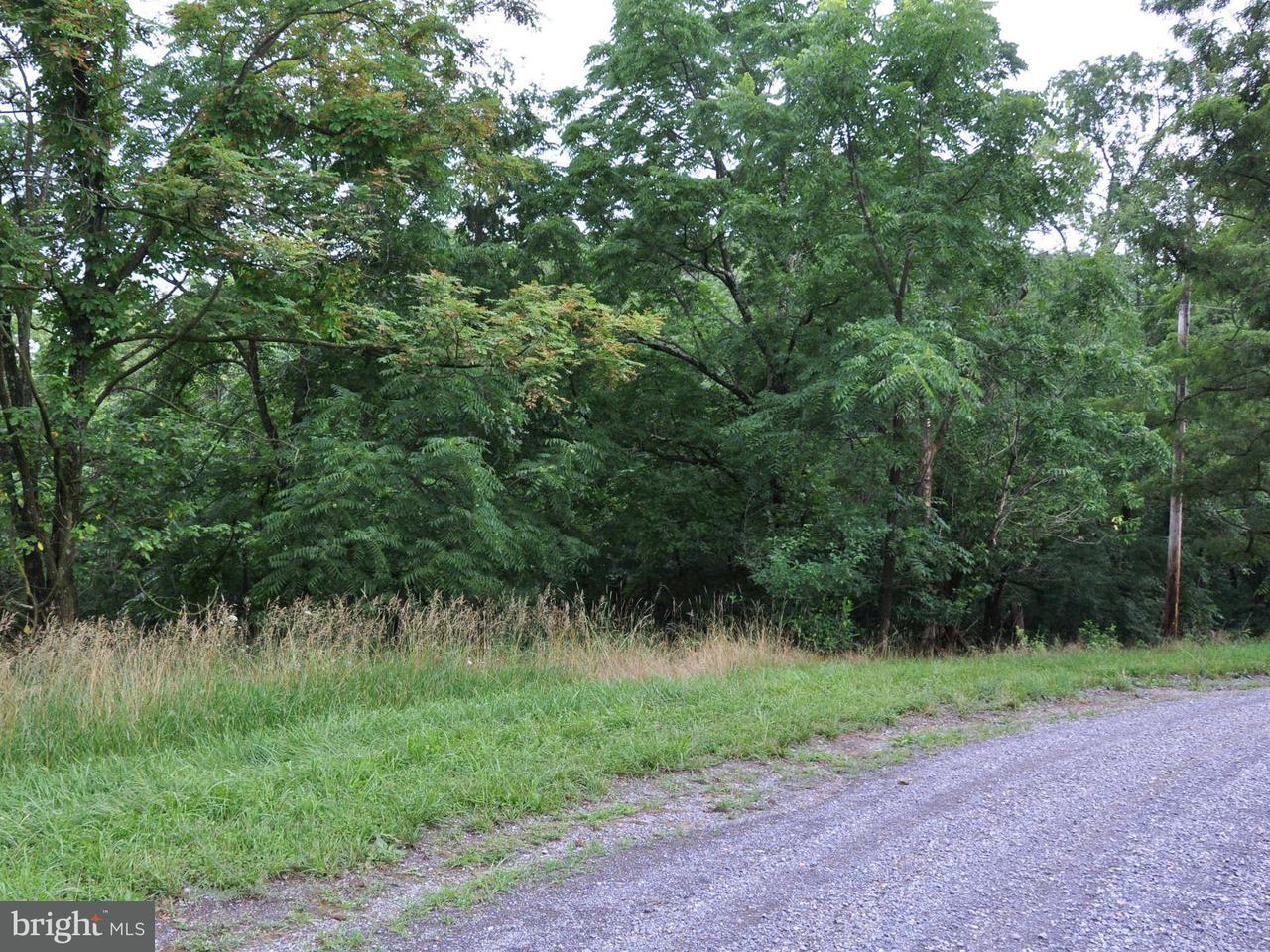 Additional photo for property listing at L-65 Sawmill Dr  Gore, Virginia 22637 United States