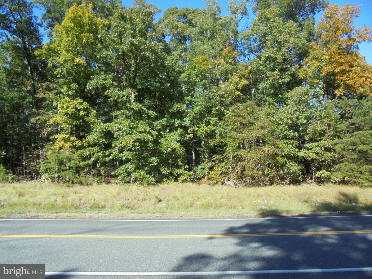 Additional photo for property listing at Massaponax Church Rd  Fredericksburg, Virginia 22407 United States