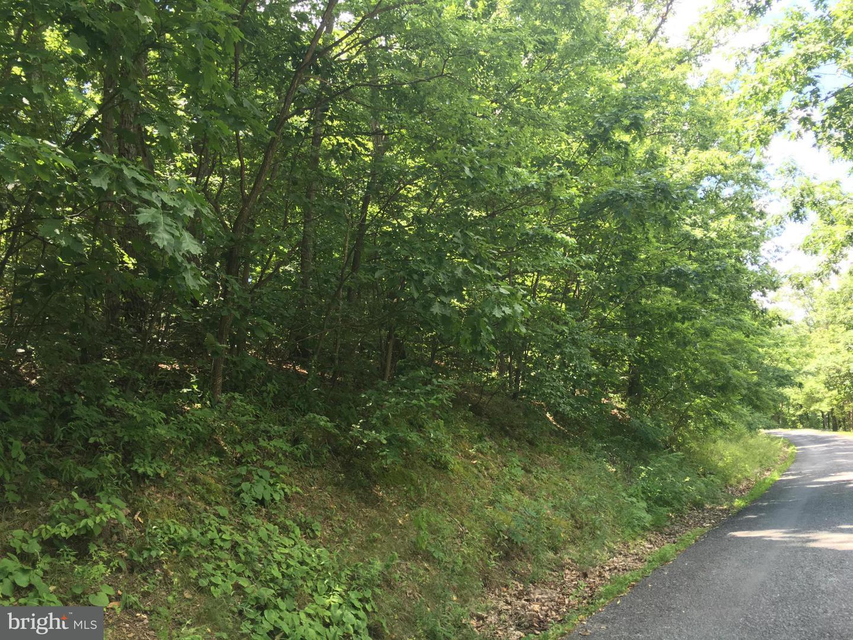 Land for Sale at Lot #45 Timberlake Drive James Creek, Pennsylvania 16657 United States