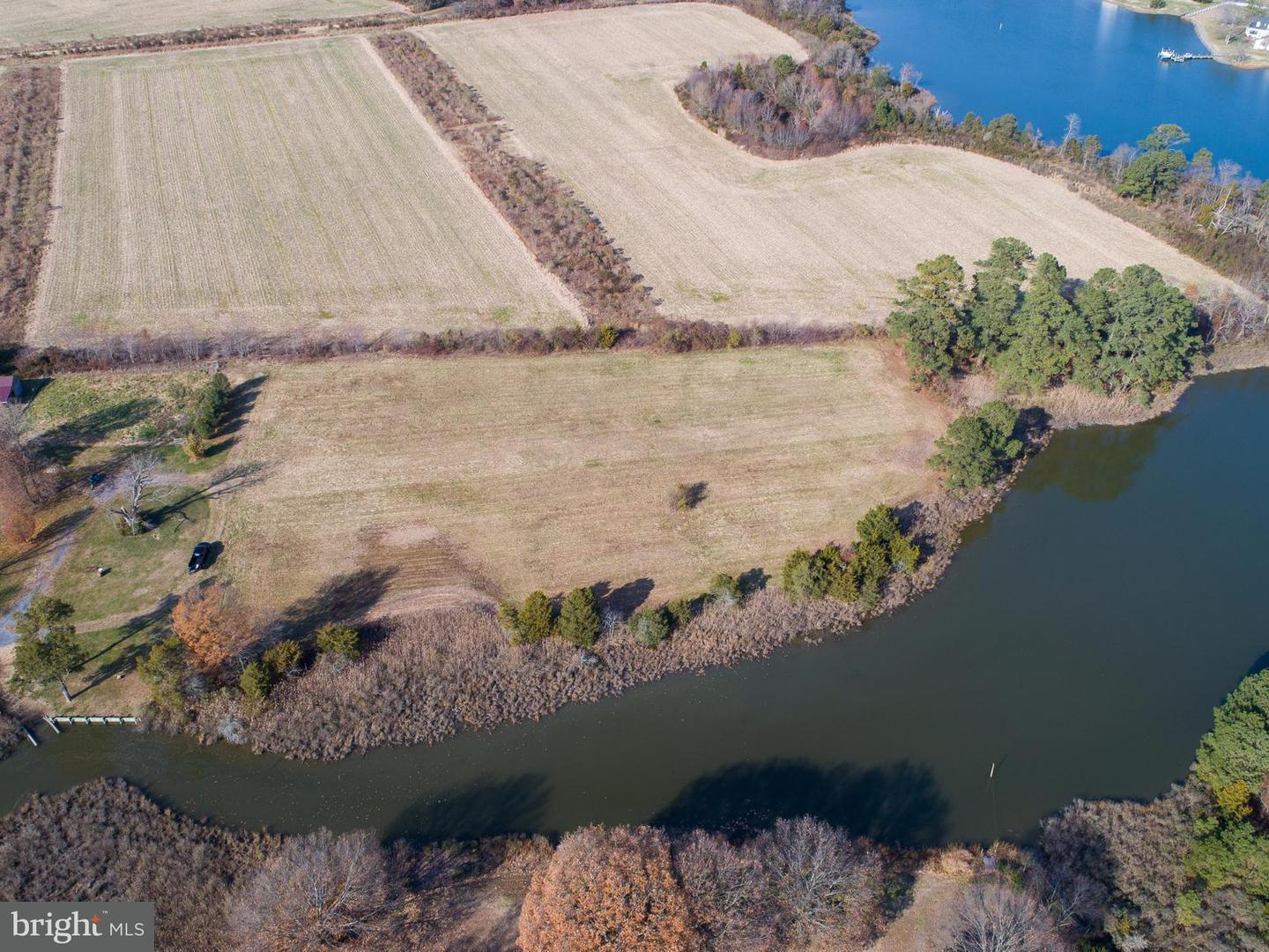 Land for Sale at Taylors Island Rd Woolford, Maryland 21677 United States