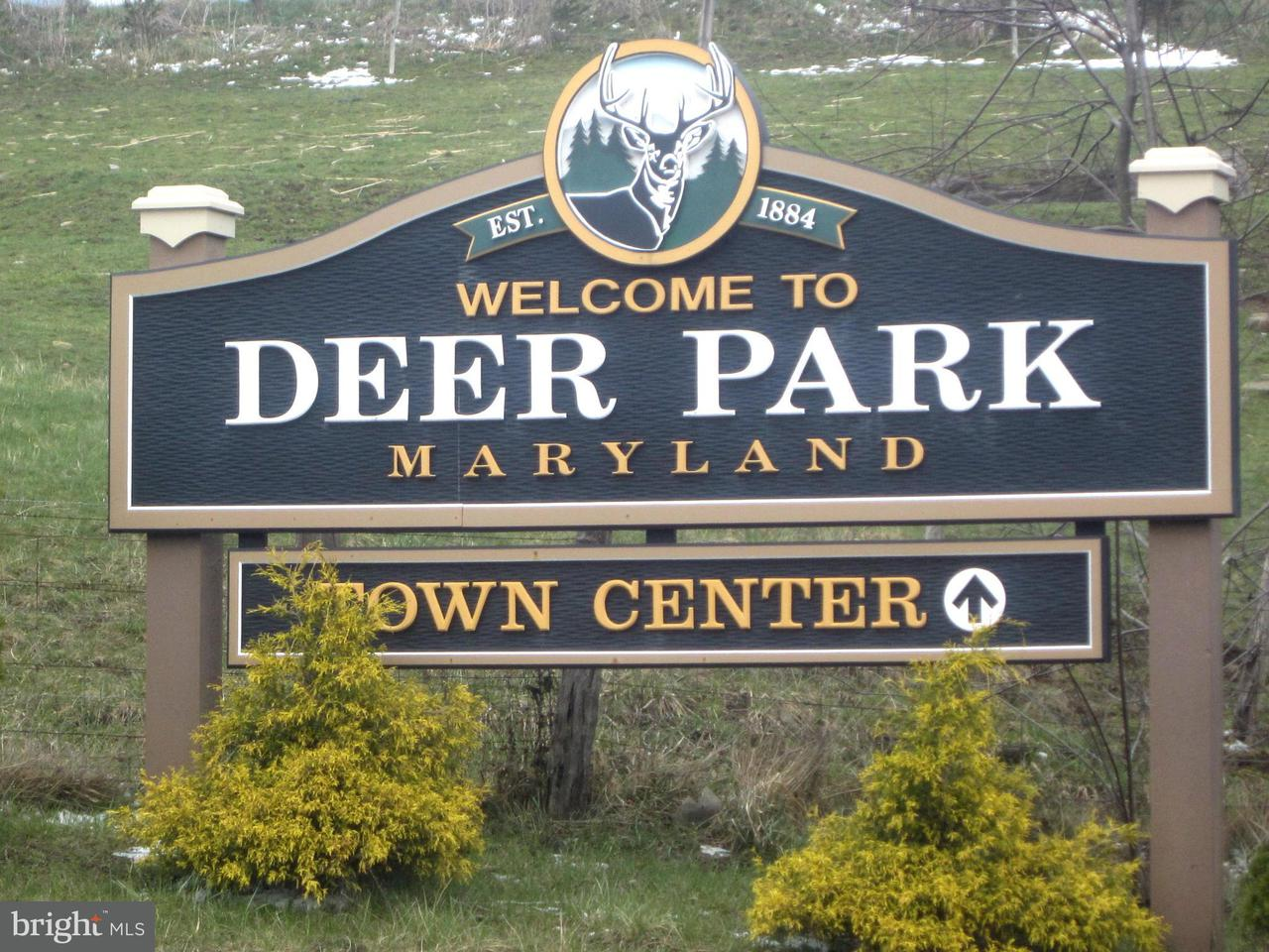 Land for Sale at Old Altamont Rd Deer Park, Maryland 21550 United States