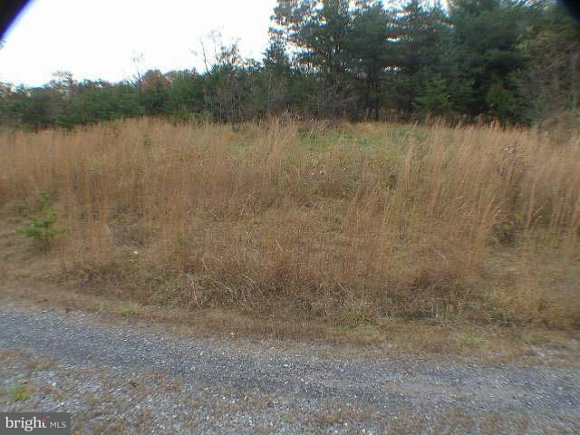 Additional photo for property listing at Todd Coates Lot 6  Winchester, Virginia 22603 United States