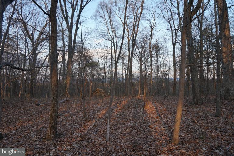 Land for Sale at Hungaria Ave Berkeley Springs, West Virginia 25411 United States