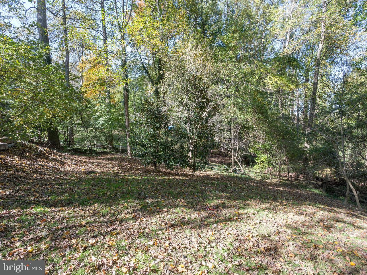 Land for Sale at 7028 Arbor Lane 7028 Arbor Lane McLean, Virginia 22101 United States